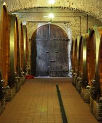 Rome Super Saver: Skip-the-Line Ancient Rome and Colosseum Walking Tour plus Frascati Wine Tasting Tour