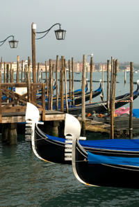 Venice Shore Excursion: Small-Group Best of Venice Walking Tour and Grand Canal Taxi Ride