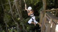 Treehouse Plus Zipline Course
