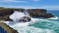 Beautiful Coastal Sightseeing Tour of Barbados