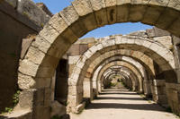 Izmir Shore Excursion: Izmir Half-Day Sightseeing Tour*