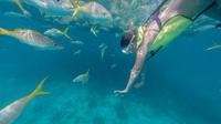 Key West Island T'ing: Sail, Snorkel and Kayak Adventure