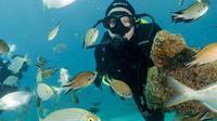 PADI Discover Scuba Diving Course in Sa Coma