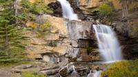 Banff to Jasper One-Way Tour