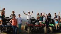 Panoramic Buggy Tour from Malaga