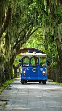 Savannah River Cruise and Hop-on Hop-off Trolley Tour