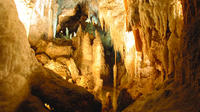 Auckland to Rotorua via Waitomo Glowworm Caves One-Way Tour
