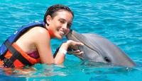 Puerto Aventuras Dolphin Swim