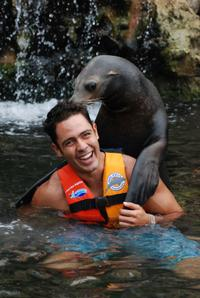 Sea Lion Encounter in Cozumel at Chankanaab Beach Adventure Park