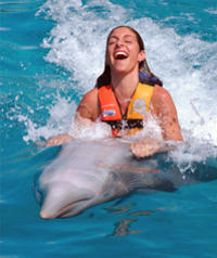 Tortola Dolphin Swim Adventure