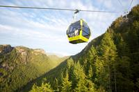 Sea-to-Sky Highway Day Trip from Vancouver: Shannon Falls, Britannia Mine and Gondola Ride