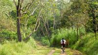 Nuvali Bike Tour from Makati