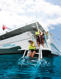Oahu Dolphin-Watching Cruise with Optional Lunch