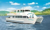 Oahu Wild Dolphin Watching Cruise & Snorkel with Lunch
