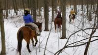 Horseback riding in Cortina d