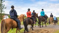 Horseback Riding Lesson in Alta Badia