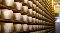 Parmigiano Reggiano: Unique Tour and Tasting from Verona