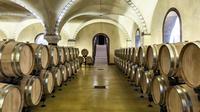 Prosecco and Amarone Wine tasting in Verona at Tenute Salvaterra