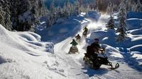 Snowmobile Experience in the Alps