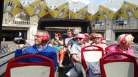 Sightseeing Bus Tour of Rotterdam