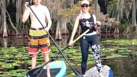 1-Hour Stand Up Paddle Board Rental from Lake Buena Vista Area
