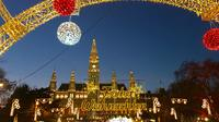 Vienna Christmas Tour including Belvedere Palace Market