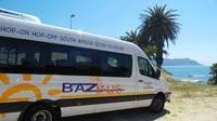 One-Way Hop-on Hop-off Bus from Port Elizabeth to Cape Town Private Car Transfers