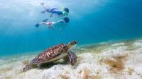 St Maarten Sea Adventure with Snorkeling at Creole Rock