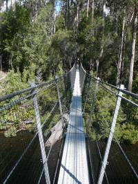Huon Valley and Tahune Forest Airwalk Tour from Hobart