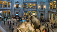 Super Saver Private Guided Tour: Smithsonian Museum of Natural History and National Gallery of Art Private Car Transfers