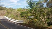 Guided Scenic Bike Ride From Puerto Vallarta To Puente Horcones