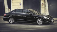 Arrival Private Transfer Berlin Sch�nefeld Airport to Berlin by Business Car Private Car Transfers