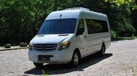 Arrival Private Transfer MAD to Madrid in a Minibus