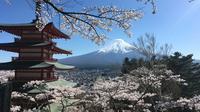 Private Tour: Chartered Car to Mt. Fuji and Hakone Lake Ashi
