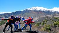 Mount Etna: Morning 4WD Tour from Catania Including Local Food Tasting