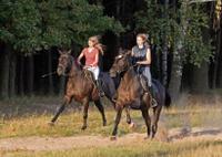 Horseback Riding To La Fortuna Waterfall