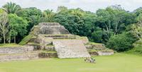Altun Ha Half-Day Tour