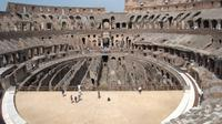 Skip-the-Line Colosseum, Palatine Hill and Roman Forum Tour, with Arena Acc
