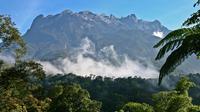 Kota Kinabalu Park and Poring Hot Springs Tour
