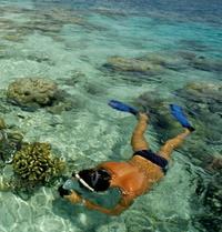 Acapulco Snorkeling Tour