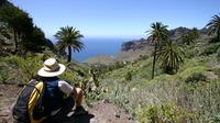 Full Day Tour of La Gomera