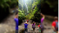 1-Day Rustic Tour from Marcos y Cordero to Charco Azul in La Palma