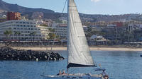 3-Hour Boat Trip from Costa Adeje in Tenerife