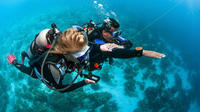 4-day diving course for beginners in open waters