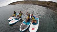 90-Minutes Paddle-Board Course in Playa de las Américas