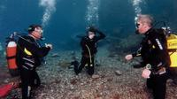 Half-Day Scuba Review Course in Tenerife