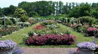 Brooklyn Botanic Garden Admission with 3-Course Dining at Yellow Magnolia Cafe