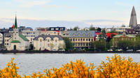 2-Hour Reykjavik City Walking Tour