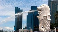 Full-Day Private Singapore Heritage Sightseeing Tour