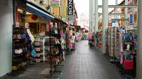 Half-Day Chinatown Tour from Singapore